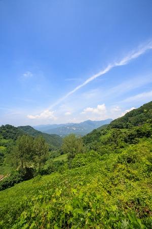 a rural summer of Junggok-ri