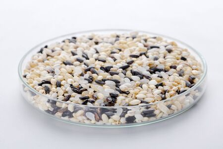 Assortment of Various grains  rice in bowls.