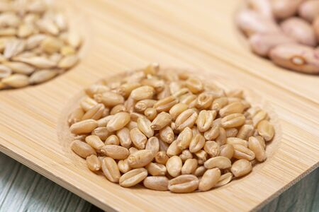 collection of healthy superfood, close up of various seeds 免版税图像