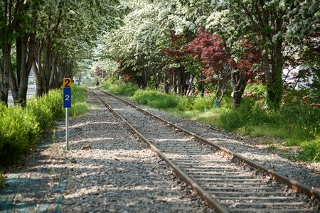 Countryside scene of railway in spring