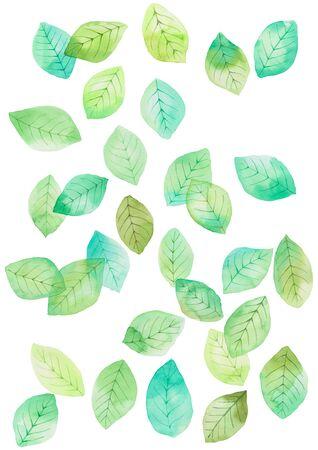 Watercolor leaves pattern illustration
