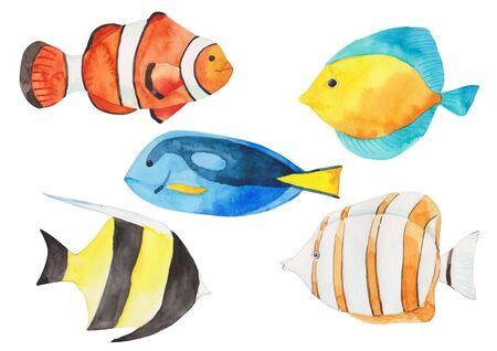 Watercolor fish pattern illustration