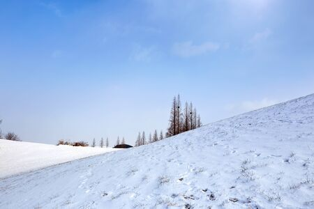beautiful winter mountain landscape with snow