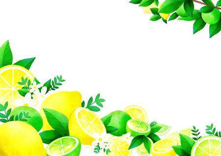 summer fruit, lime and lemon pattern design illustration