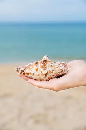 Summer holiday concept, Summer beach accessories 012