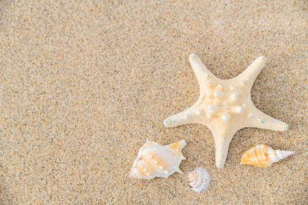 Summer holiday concept, Summer beach accessories 008