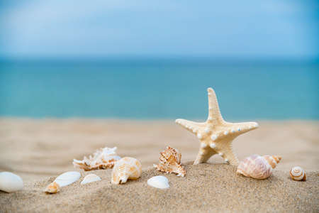 Summer holiday concept, Summer beach accessories 005