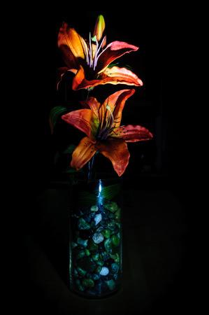 glass vase: Dark Tiger Lilly in glass vase.