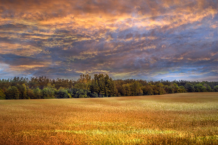 Beautiful Colorful Sky Over A Country Wheatfield Lanscape Stock Photo