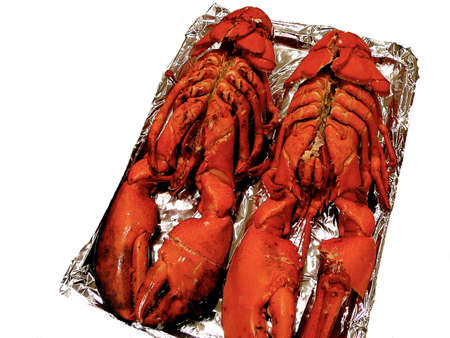 Two 3 pound lobsters on tinfoil platter isolated on white photo