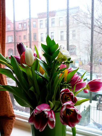 brownstone: Bouquet of Colorful Tulips in Brownstone Window