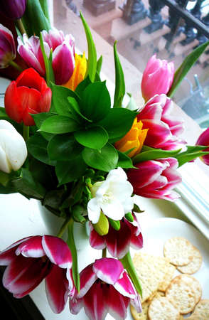 Bouquet of Colorful Tulips with Plate of Crackers