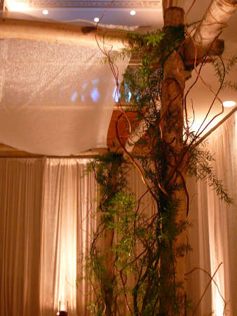 Detail of elaborate chuppah with green vines at Jewish wedding Stock Photo - 912957