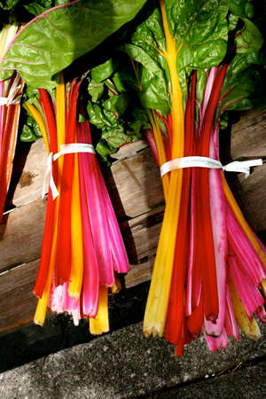 Colorful Organic Chard at Farmers Market