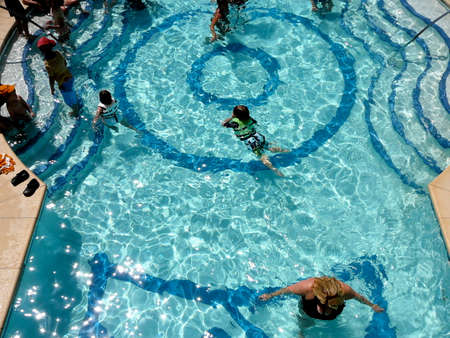 Aerial View of Swimmers in Summer Pool