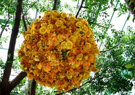 atrium: Colorful Yellow Flower Arrangement Hanging in Atrium