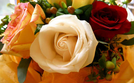 Bouquet: Three Varieties of Roses Stock Photo