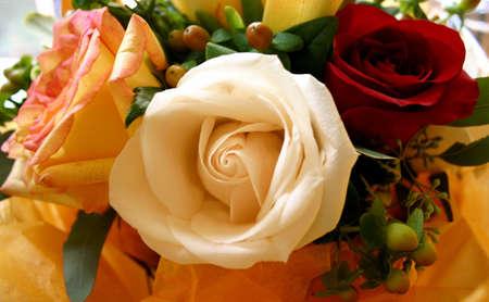 Bouquet: Three Varieties of Roses Stock Photo - 1790053