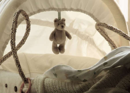 Still life of  cradle or moses basket with teddy bear photo
