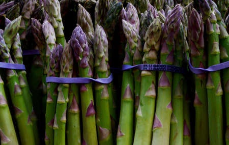 Colorful Organic Asparagus for Sale at Market