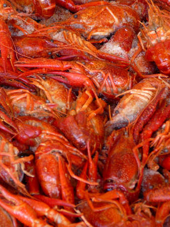 Pile of fresh red crawfish on ice