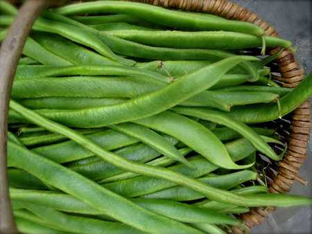Organic Green Beans at Outdoor Farmers Produce Market