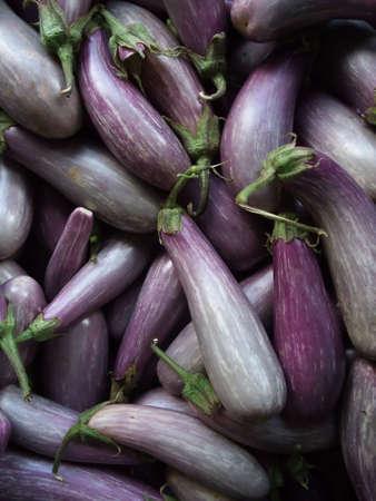 Beautiful Organic Purple Eggplants at Farmers Market