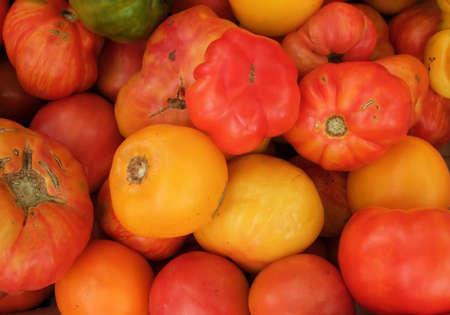 heirloom: Colorful Organic Heirloom Tomatoes at Farmers Market