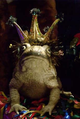 principe rana: Romance de Cuento de Hadas: besar a la rana, Tal vez �l es el Pr�ncipe