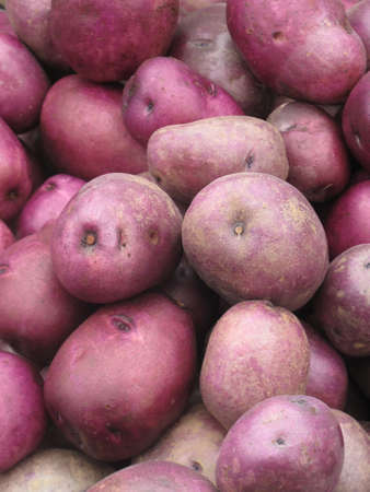 bliss: Red organic potatoes piled at farm stand