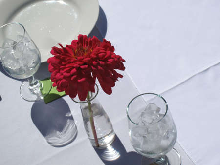 Place setting for formal outdoor garden party Stock Photo - 15455994
