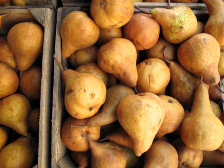 Boxes of organic Bosc pears for sale at farmers market Stock Photo - 16882506