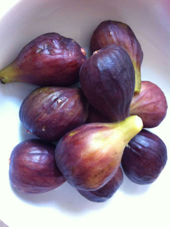 Fresh summer figs Stock Photo