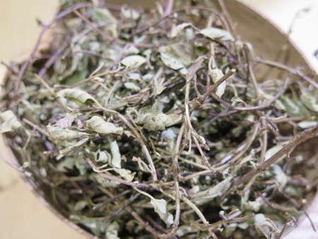 oregano: Spice market: bowl of dried organic oregano Stock Photo