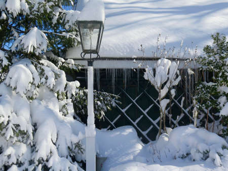 covered in snow: Winter landscape with snow covered cottage and lamppost