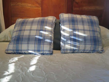 blue plaid: Morning sunlight on blue plaid pillows on bed in bedroom