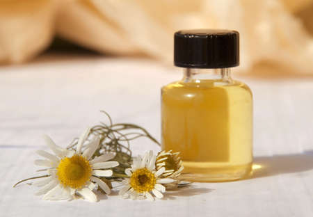 small bottle with essential oil and flower of daisy (camomile) photo