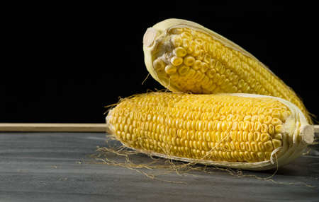 Ripe and wilted corn cobs on a black background. 版權商用圖片