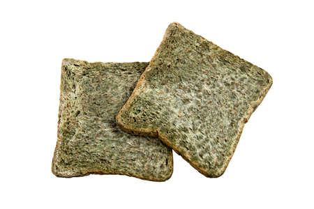 Bread's moldy, Green Tea Bread, Fungus in food on white background