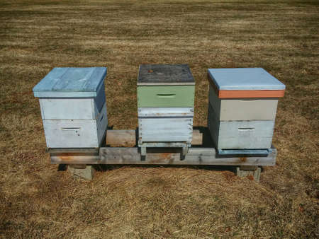 3 bee hives in open field.