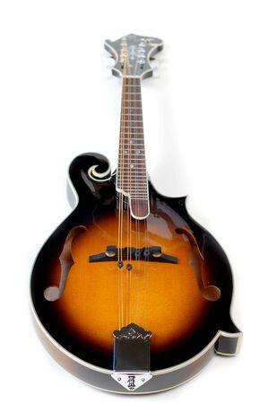 mandolino: Primo piano di un mandolino su uno sfondo bianco.