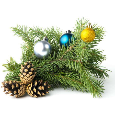 spruce brbranch of fir cones New Year holiday deputyanch photo