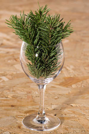 new year glass glass Christmas tree branches and cones photo