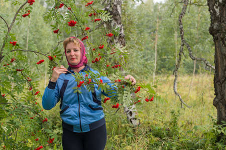 red bush: the woman in the autumn forest near red Bush Rowan Stock Photo