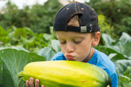the great outdoors: Boy pumpkin in the hands of the great outdoors