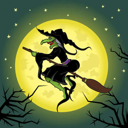 scary night: Witch flying on broom through scary night. Illustration