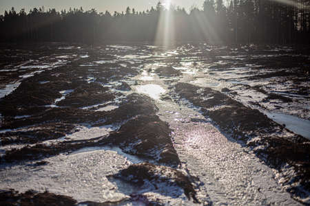 Off-road in the winter. The bright rays of the sun. 写真素材