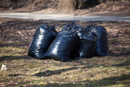 Garbage bags stand on the grass. The black plastic bags are full. Harvesting leaves in the fall. Utilities cleaned on the street.
