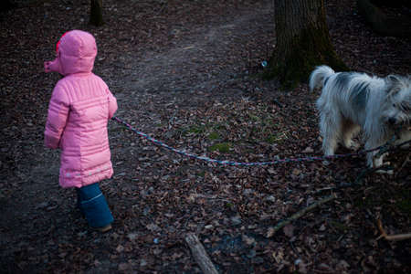 A child walks with a dog in the forest. Walking with the animal in nature. Girl in winter clothes. A child without the Internet breathes air.