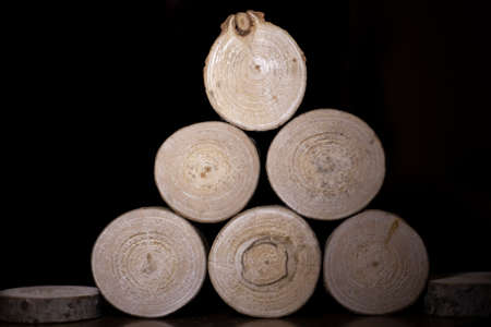 A log chopped into circles. Wood blanks. Texture of a young plant cut into segments. Background of wood. Stock Photo